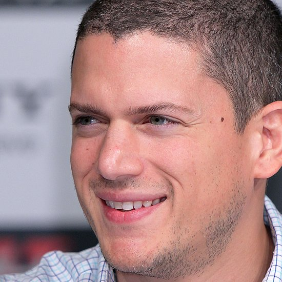 Wentworth Miller Comes Out as Gay | Video