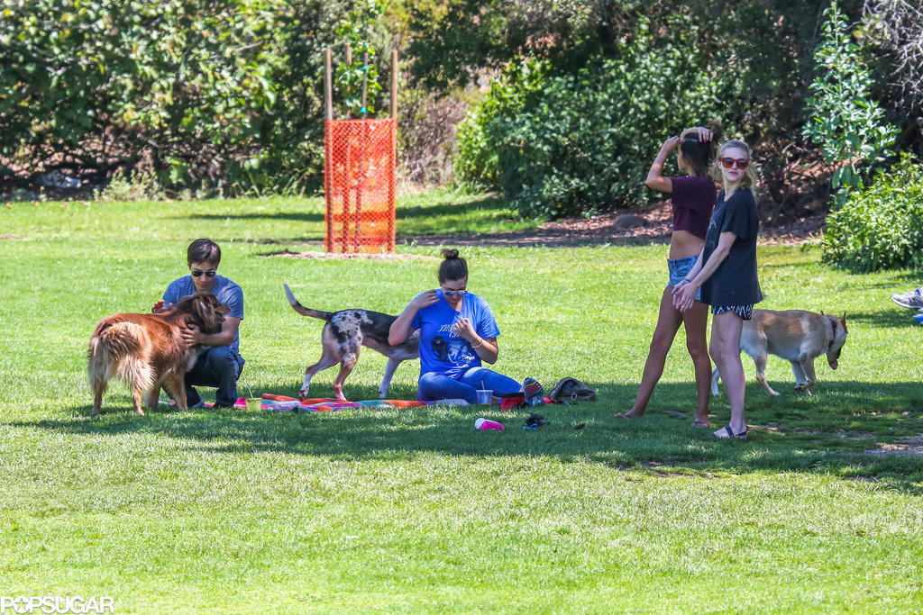 Amanda Seyfried and Justin Long played with dogs at a park in LA.