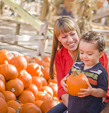 Pumpkin Patch Candids