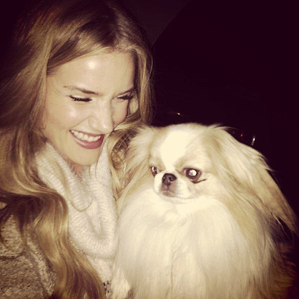 Rosie Huntington-Whiteley had a laugh with a dog named Mr. Woo. Source: Instagram user rosiehw