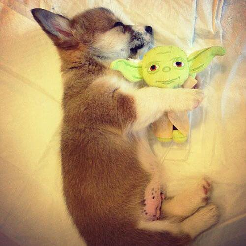 Yoda Stuffed Toy