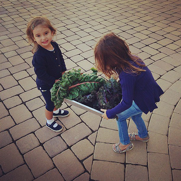 Arabella Kushner carried her harvest from her grandma's garden. Source: Instagram user ivankatrump