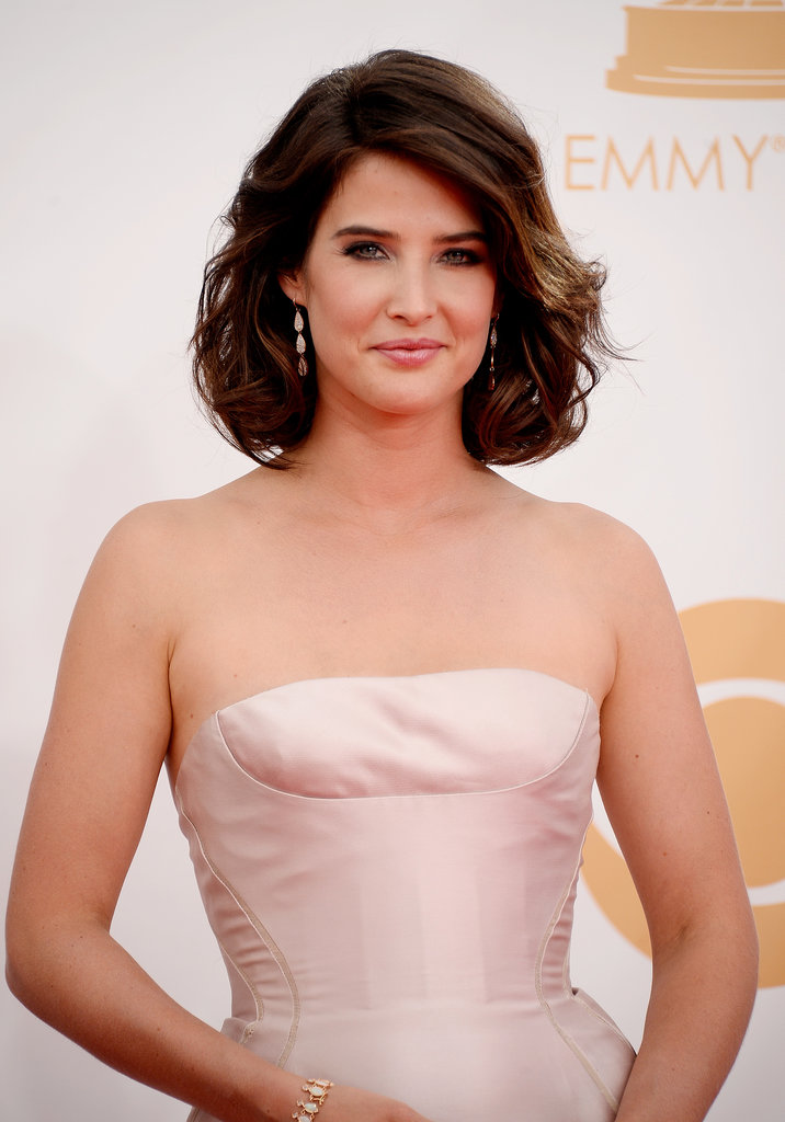 Cobie Smulders opted for a high-on-volume hairstyle, her lips done up in a frosted pink hue.