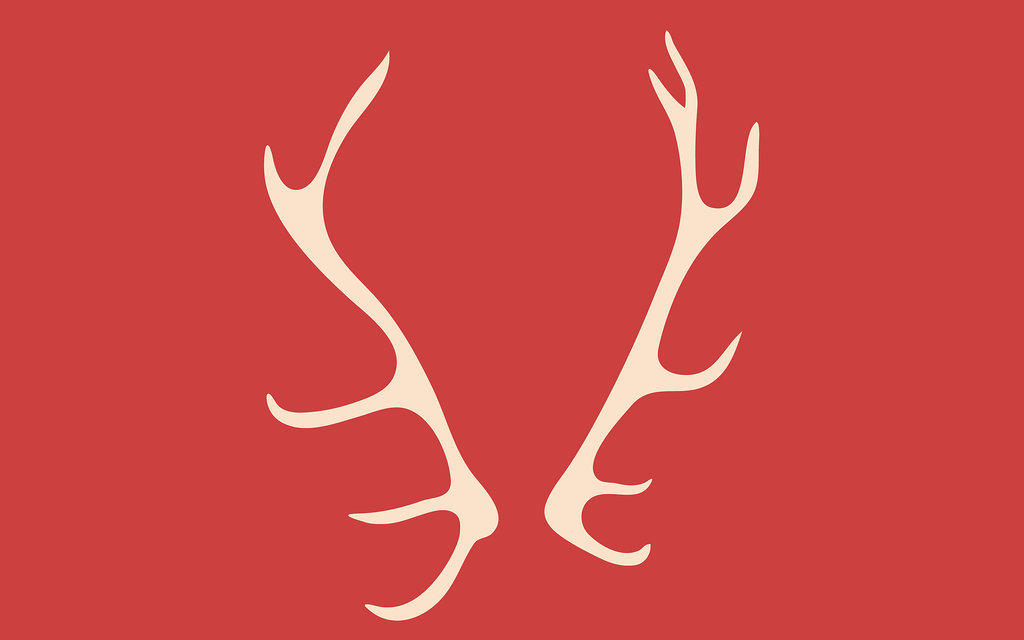 Antlers by Olive