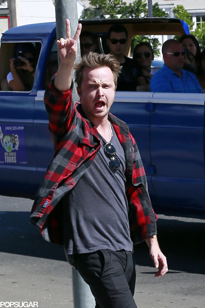 Aaron Paul Gets Animated After the End of Breaking Bad