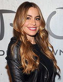 Sofia Vergara sported her signature sleek waves with rosy lips and cheeks.