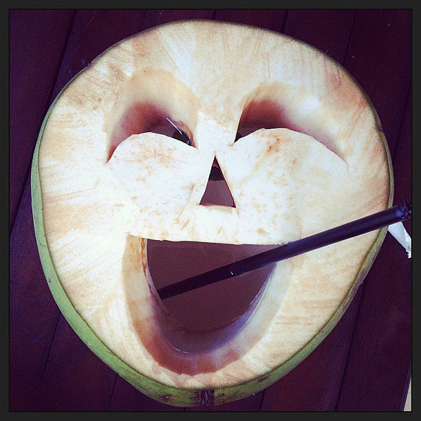 The happiest coconut around. Source: Instagram user lindyklim