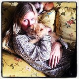 Nicky Hilton cuddled with a cat. Source: Instagram user nickyhilton