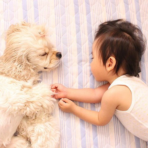 Cute Kid and Dog Pictures