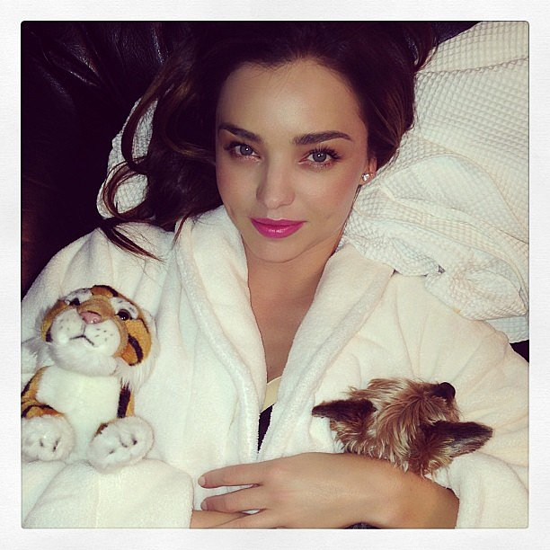 Miranda Kerr cuddled up in bed with a robe, a stuffed tiger, and a tiny puppy. Source: Instagram user mirandakerr