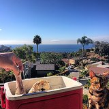 Stephen Colletti snacked on turkey while taking in the view at Laguna Beach, CA. Source: Instagram user stephencolletti