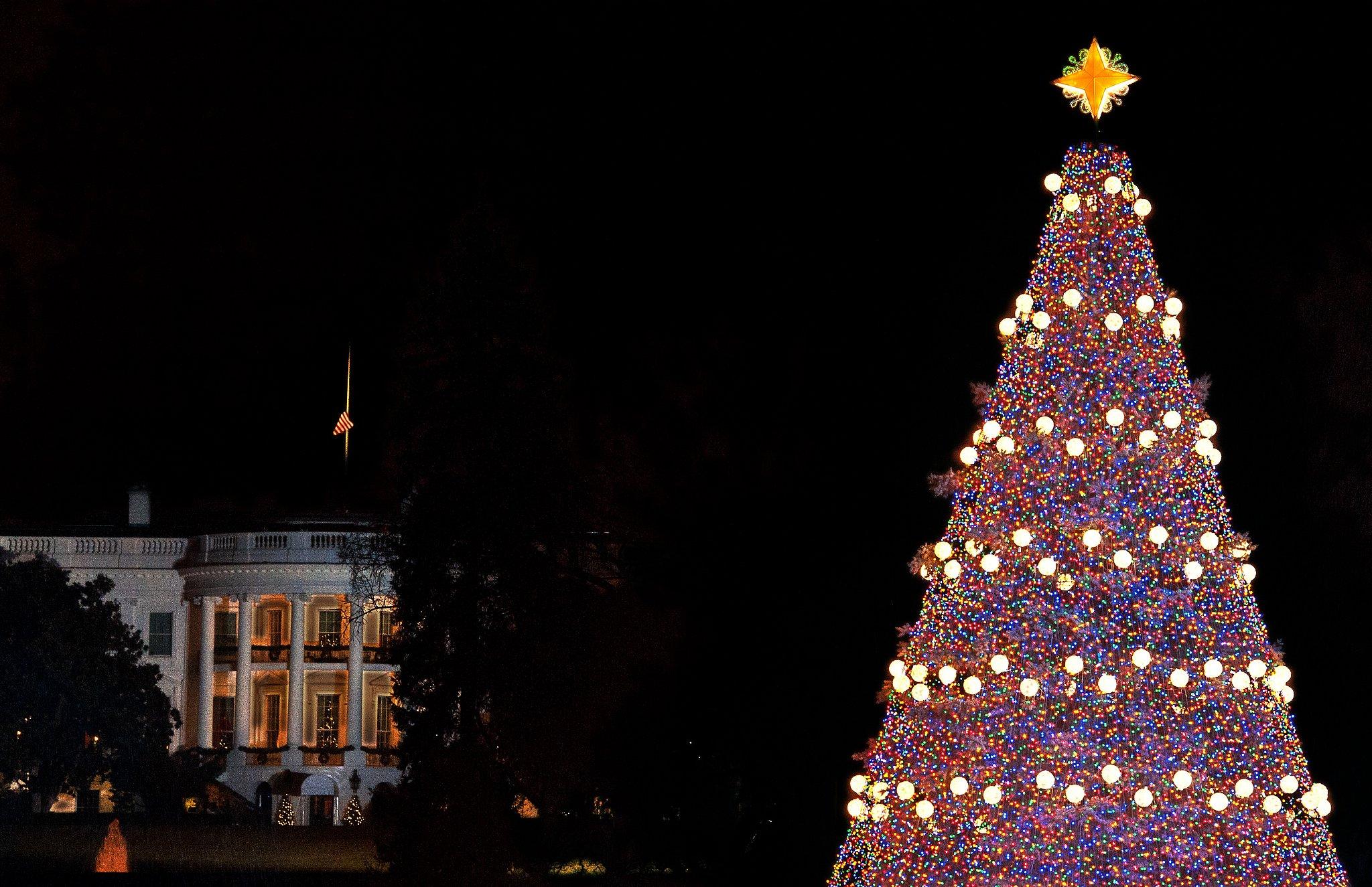Pop Christmas Tree