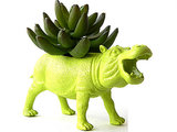 Green Hippo Plant Pot