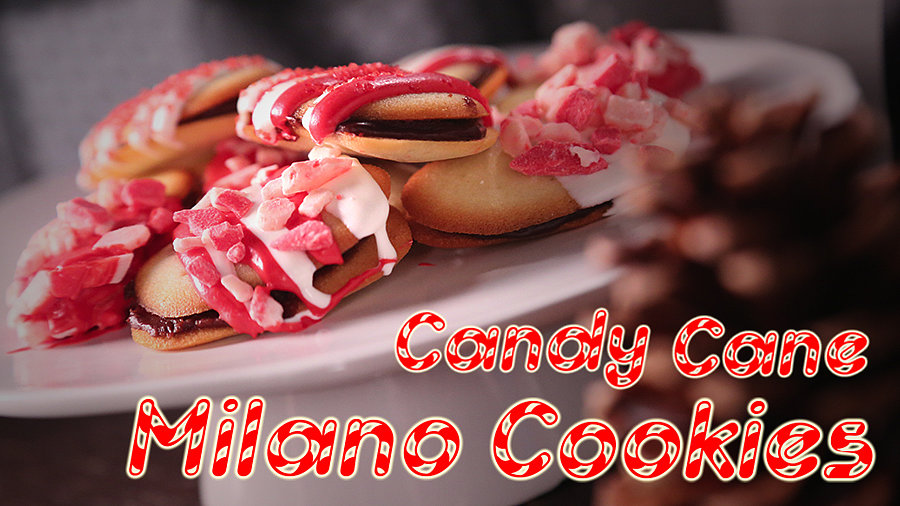 Mini Candy Cane Milano Cookies For Santa!