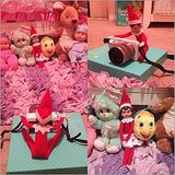 Elf Photo Shoot