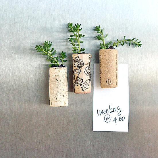 Wine-Cork Succulent Magnets