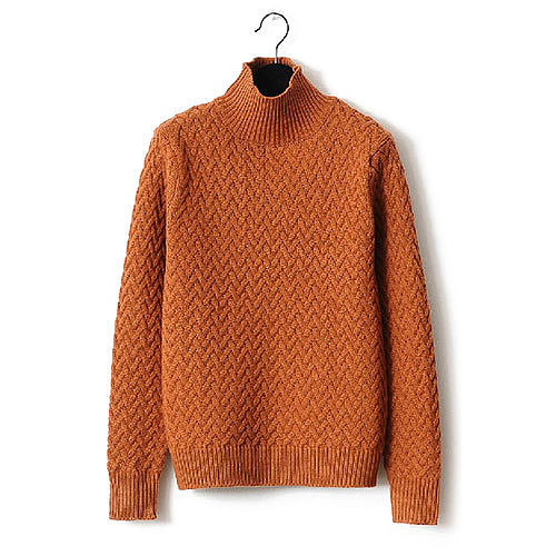 Image of [grxjy560724]Turtle Neck Elastic Solid Color Thicken Weave Sweater Pullover