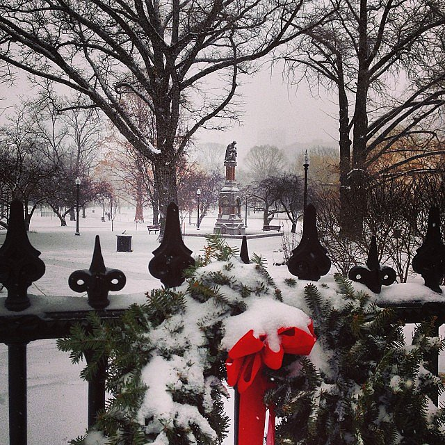 A sign of Christmas past appeared through the snow in Boston.  Source: Instagram user goskogo