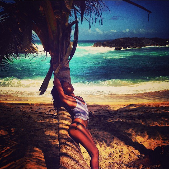 Chanel Iman struck a provocative pose on a palm tree while on her Caribbean getaway. Source: Instagram user chaneliman