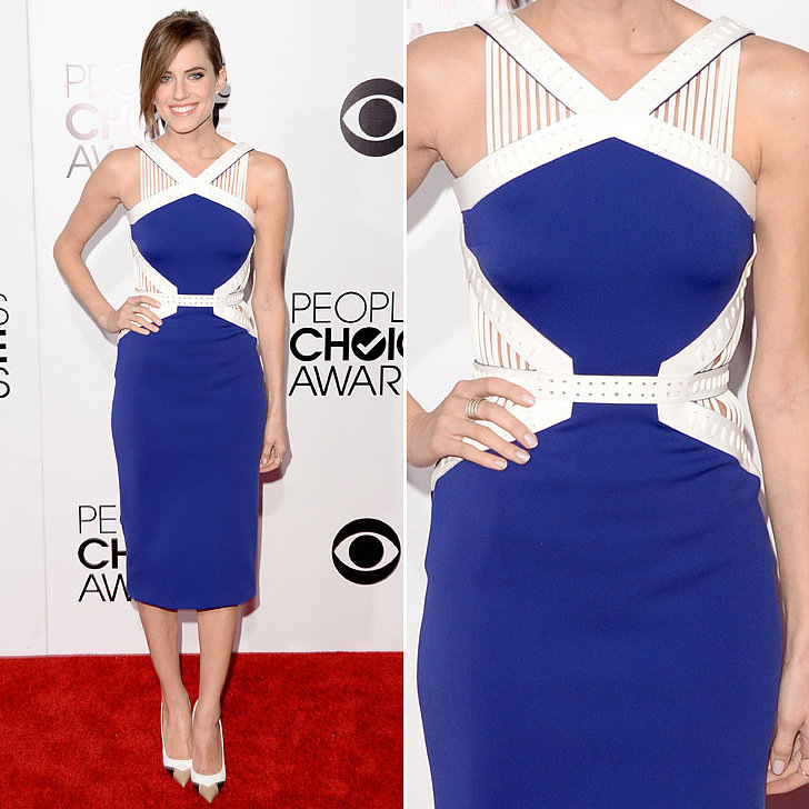 Allison Williams's Dress Blues