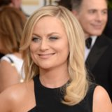 Amy Poehler Hair and Makeup at Golden Globes 2014