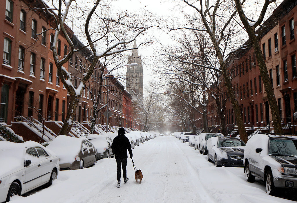 After a heavy snowfall in NYC, a man walked his dog through the street in Brooklyn.
