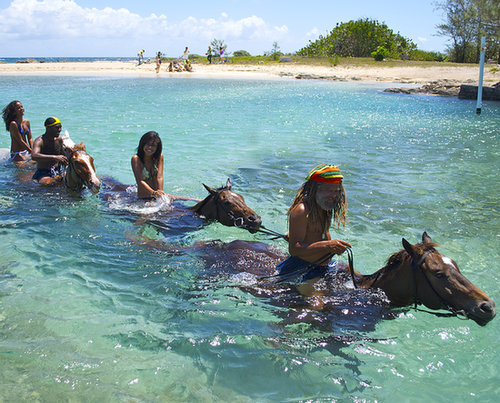 Horseback Ride in the Ocean