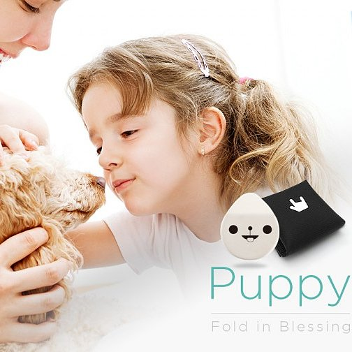 Keep Fido Safe With a Digital Puppy Protector