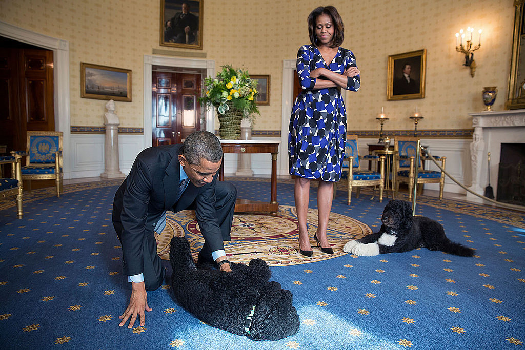 He plays on the floor with his dogs, and Michelle is #notimpressed.