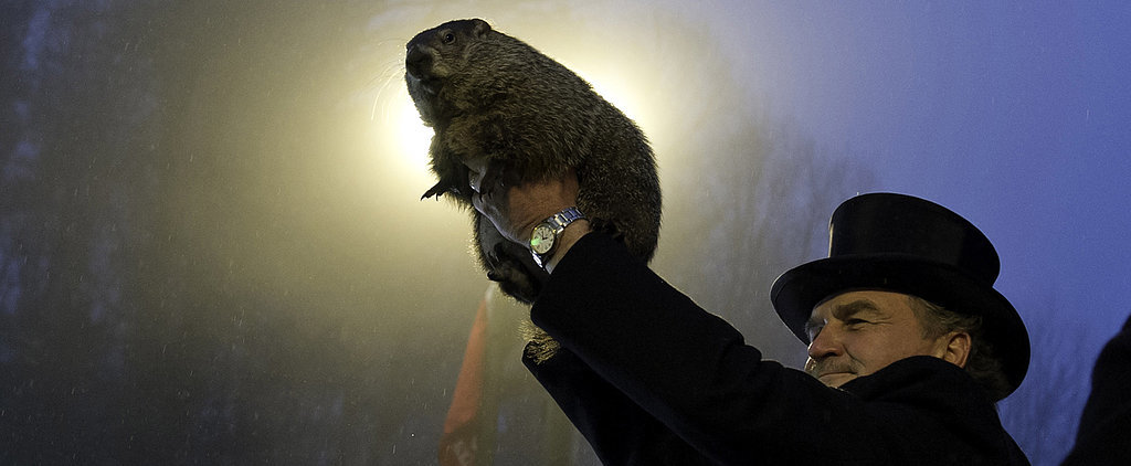 Thanks a Lot, Punxsutawney Phil