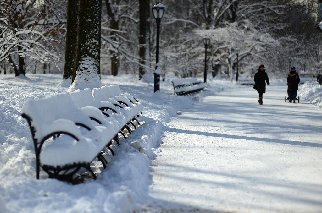 Central Park transformed into a Winter wonderland after heavy snowfall.