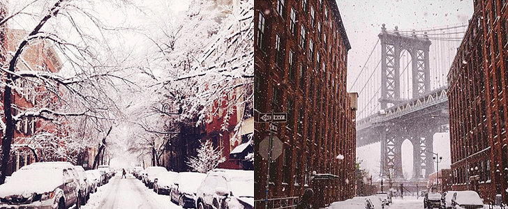 NYC Is a Real-Life Snow Globe Right Now
