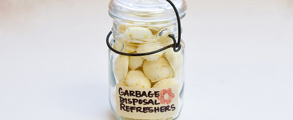 31 Days of Spring Cleaning DIYs: Garbage Disposal Refreshers