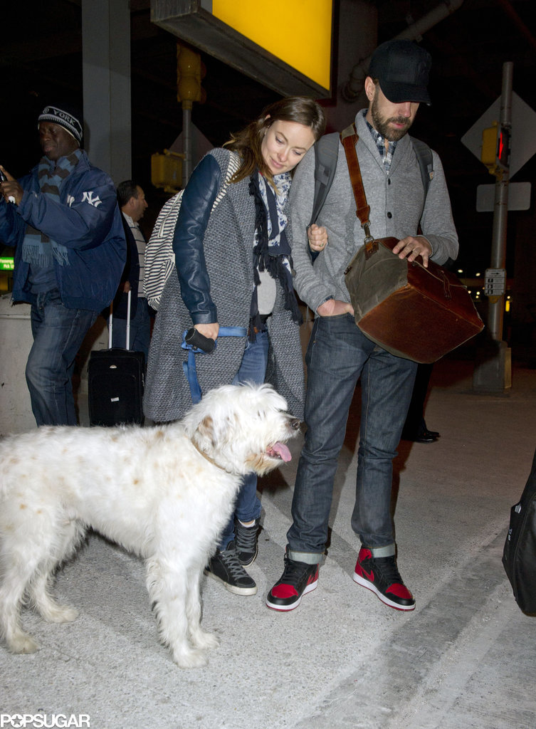 Olivia Wilde leaned on Jason Sudeikis and looked at their fluffy dog after arriving in NYC on Tuesday.