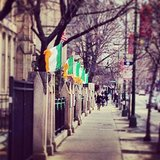 Irish flags are everywhere.