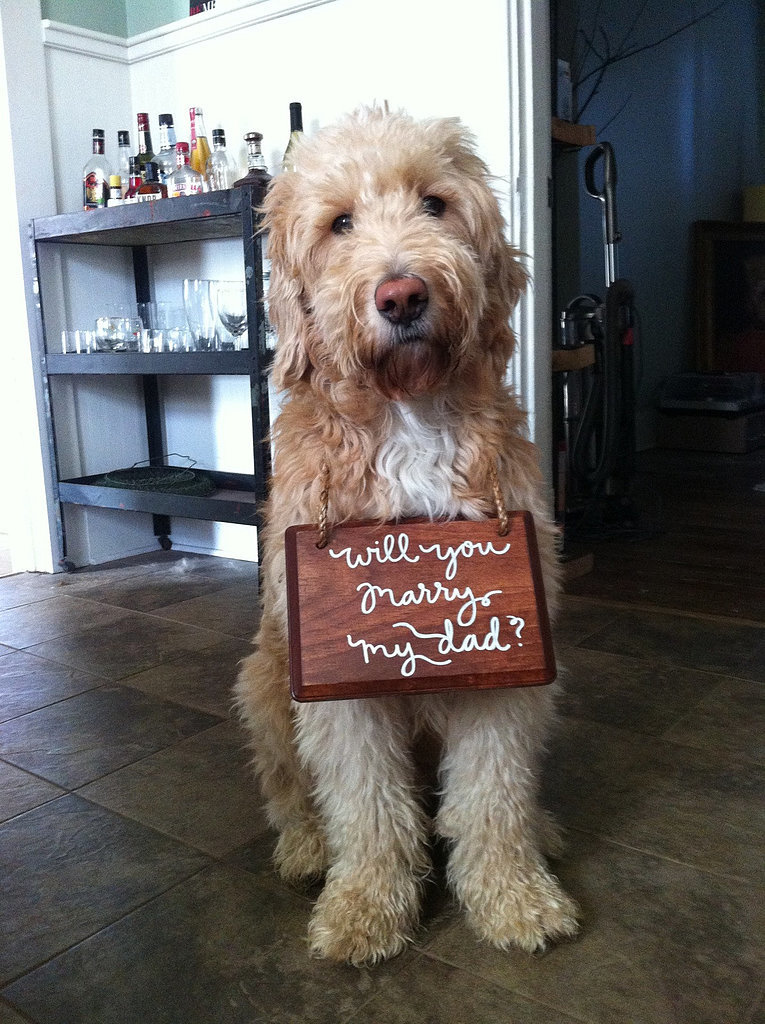 17 of the Most Amazing Proposal Pictures the Internet Has Seen