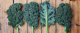 Kale: The Wonder Leaf
