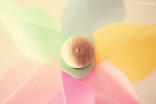 Four Trees Photography Pastel Pinwheel