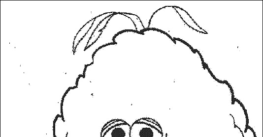 Big Bird Face Coloring Pages Coloring Pages
