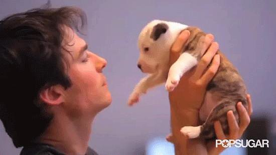 Ian Somerhalder Planting a Kiss on This Puppy
