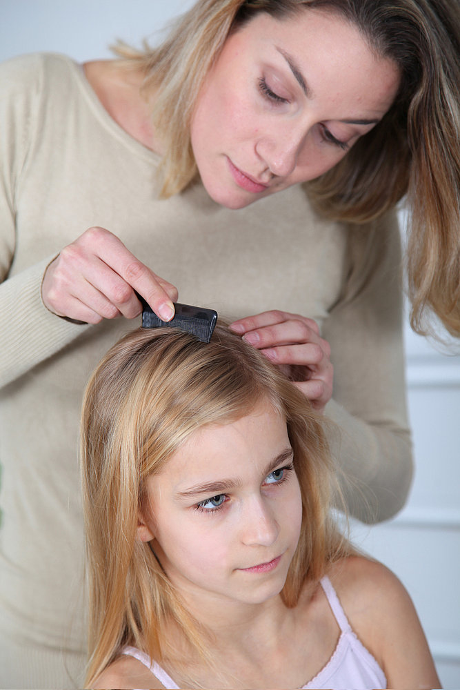 Lice Removal Experts Get the Job Done