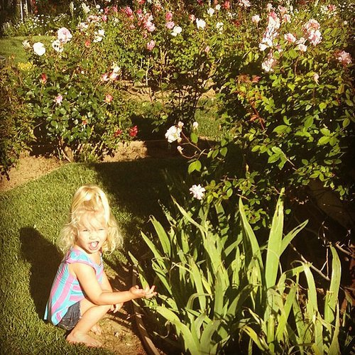 While everyone else stopped to smell the roses, Jessica Simpson's daughter, Maxwell, took a bite of one. Source: Instagram user jessicasimpson