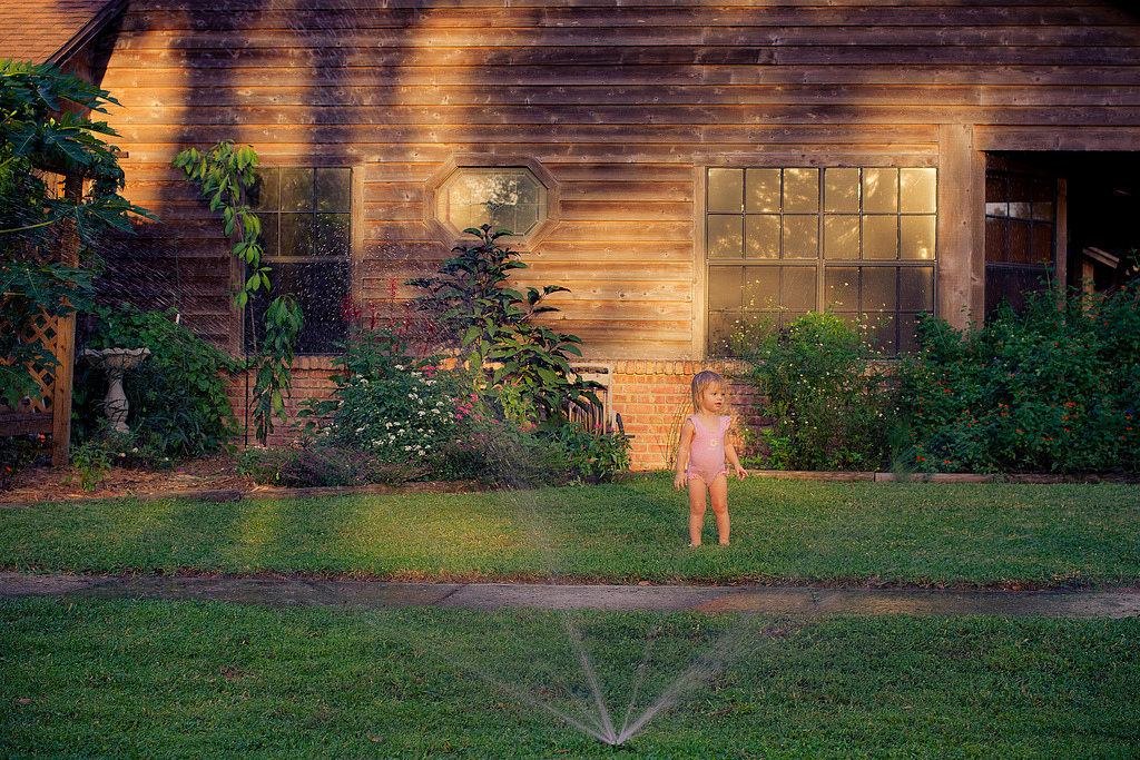 Play in the Sprinkler