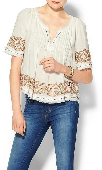 Velvet Embroidered Top