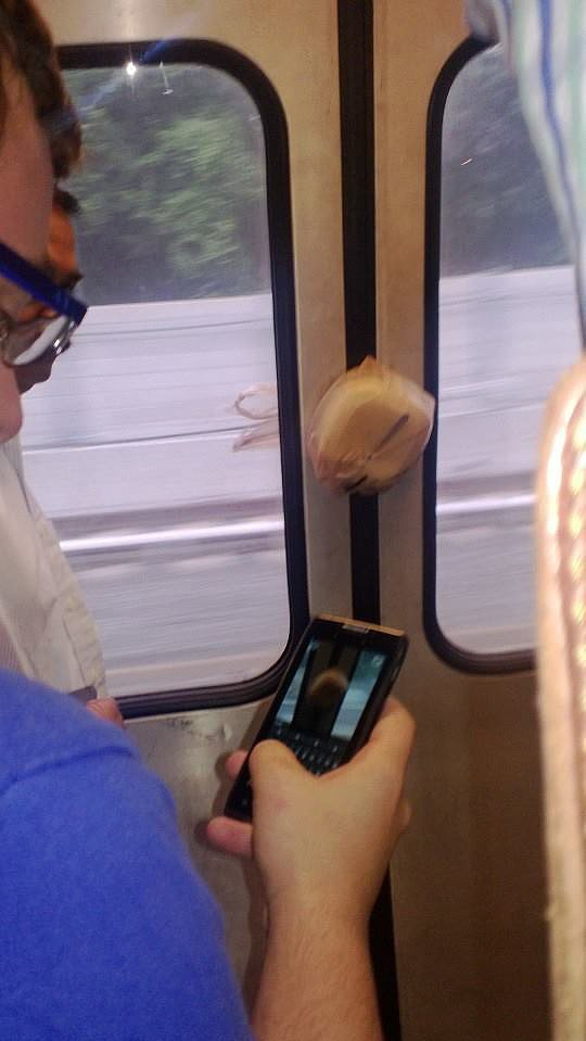 """""""This guy's lunch made it on the subway without him."""" Source: Reddit user GrabsWomensTits_Ass via Imgur"""
