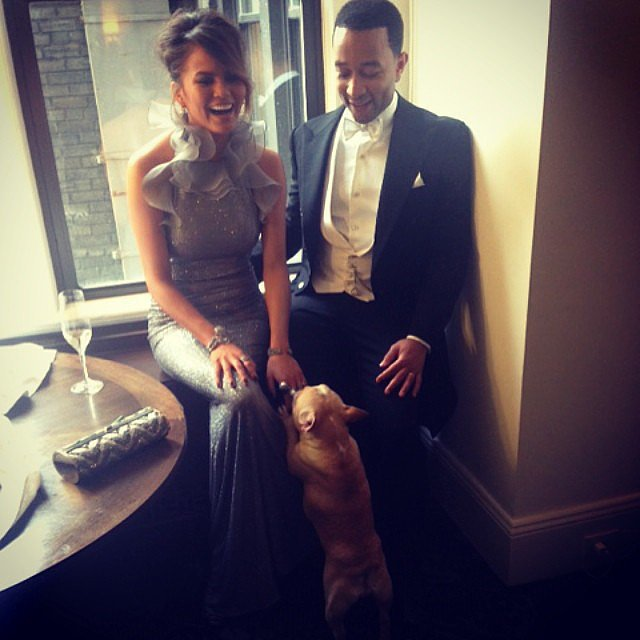 Chrissy Teigen and John Legend got ready with their pup, Pippa. Source: Instagram user ralphlauren