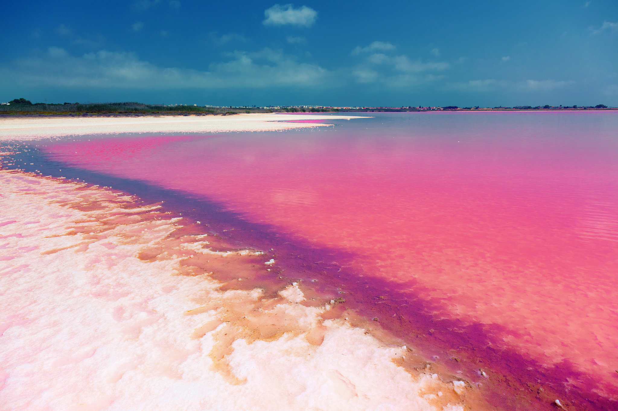 Admire the Pink Hues of Laguna Salada de Torrevieja in Spain