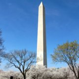 Visiting the Washington Monument With Kids