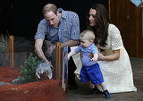 Will and Kate showed George a bilby during a stop by the Taronga Zoo in Australia during their April 2014 tour.