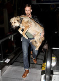 Carrying his dog through the airport like we secretly wish he was carrying us into our wedding suite.